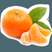 Italian Mandarin