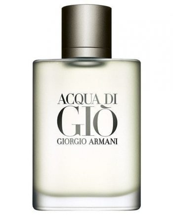 Acqua Di Gio Homme Eau de Toilette Spray
