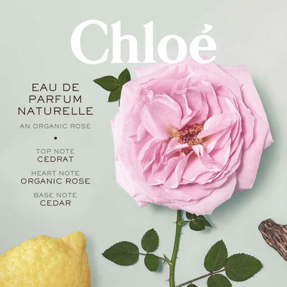 Chloe Signature Eau de Parfum Naturelle 2